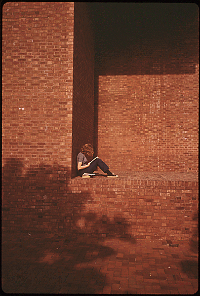 Haun, D. (1973 May). Cleo Rogers Memorial Library. The Environmental Protection Agency's Program to Photographically Document Subjects of Environmental Concern, 1972 - 1977. National Archives and Records Administration, 546478.